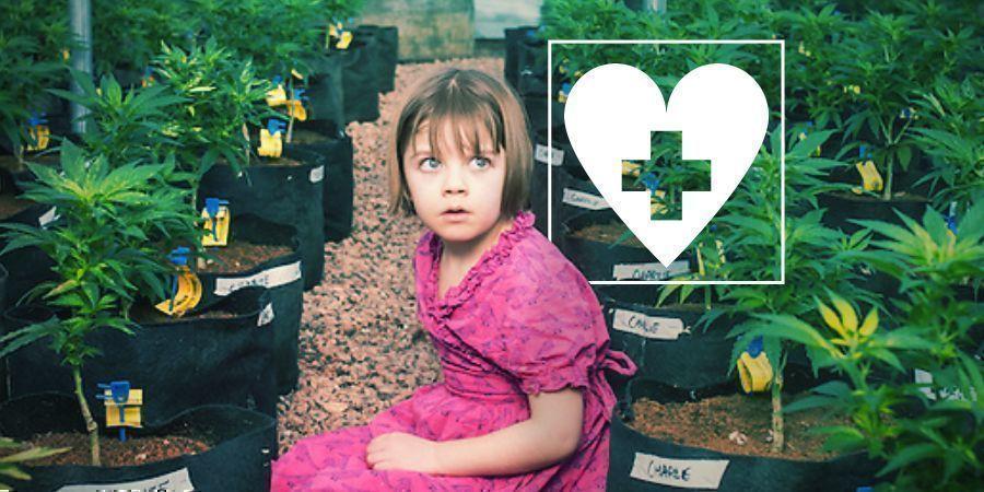 CBD en Epilepsie: Charlottes verhaal