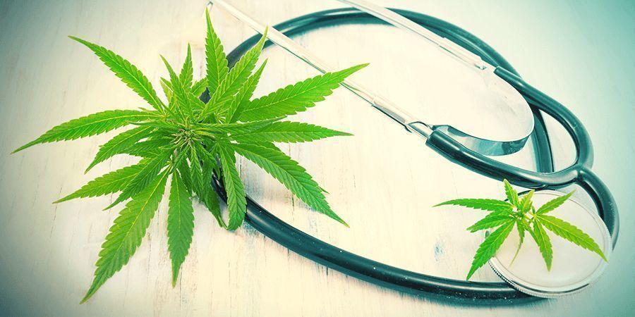 Cannabis Onderzoek: Algemeen
