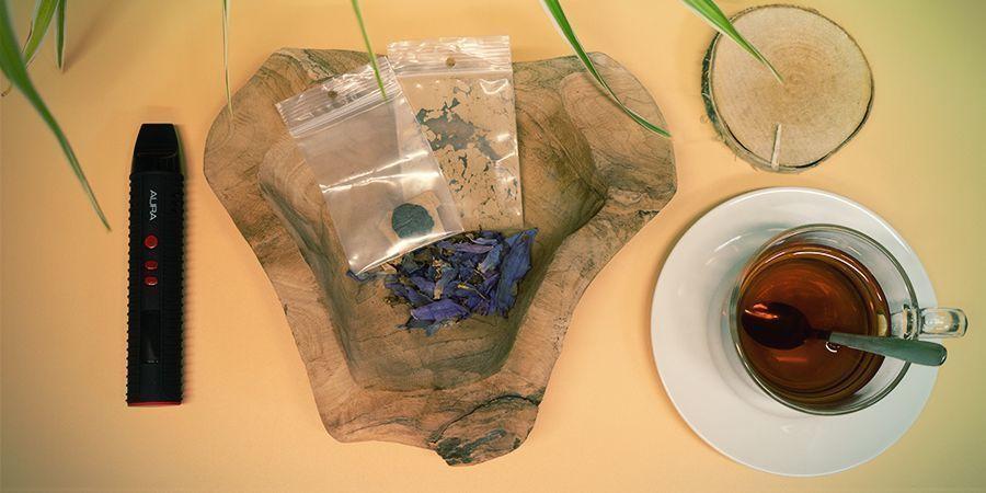 Blauwe Lotus kopen
