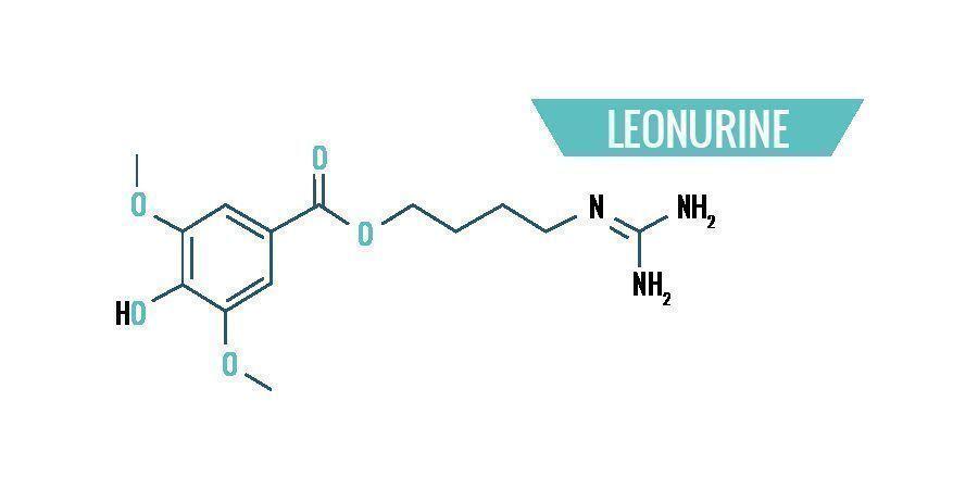 Chemie Van Leonotis Leonurus