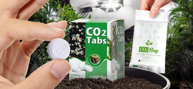 Hoe Genereer Je Extra Hoeveelheden CO₂?