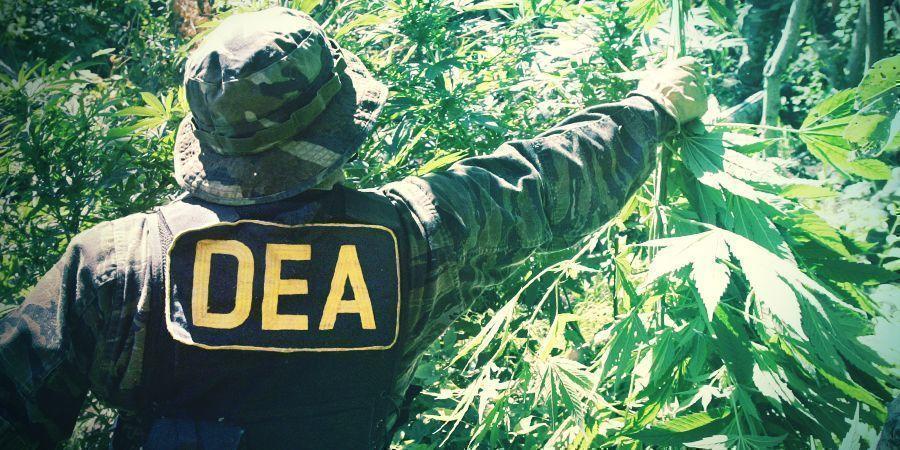 De Oorlog Tegen Drugs