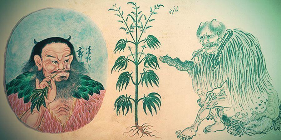 Vroeg Medisch Gebruik Van Cannabis In China