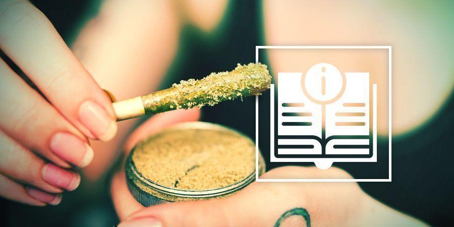 De Ultieme Gids Over Cannabisconcentraten