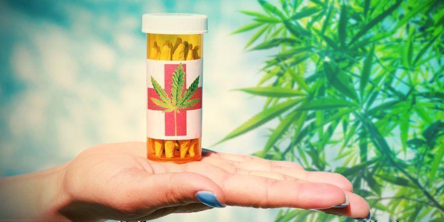 Cannabis Collectieven: Niet-Commerciële Organisaties