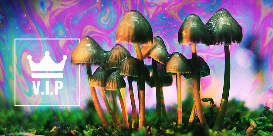 Psychedelics VIPs