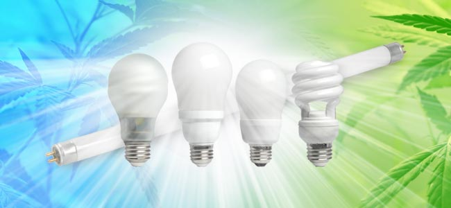 Compact Fluorescerend Licht (CFL)