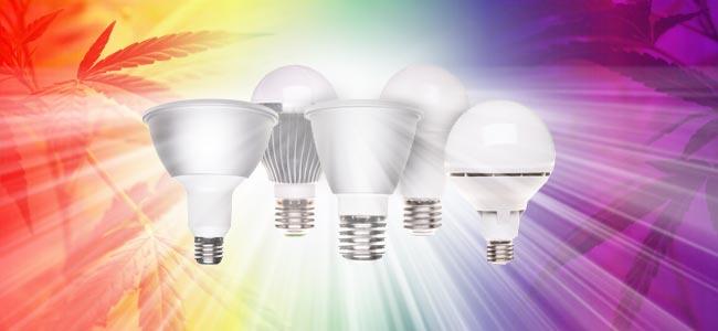 Lichtgevende Diode (LED)
