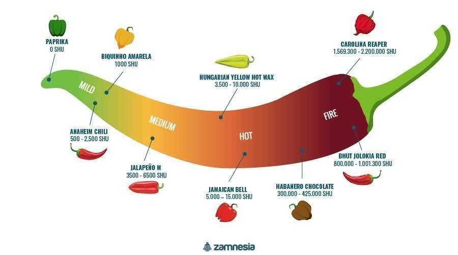 Hete Pepers Infographic