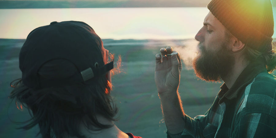 Cannabis Seedfinder: Effecten Van Wiet