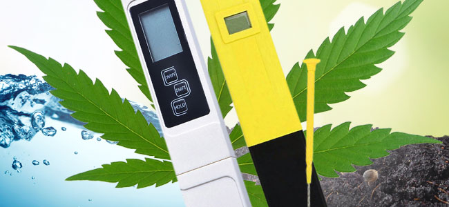 Hoe Je De pH- En EC-waarde Meet