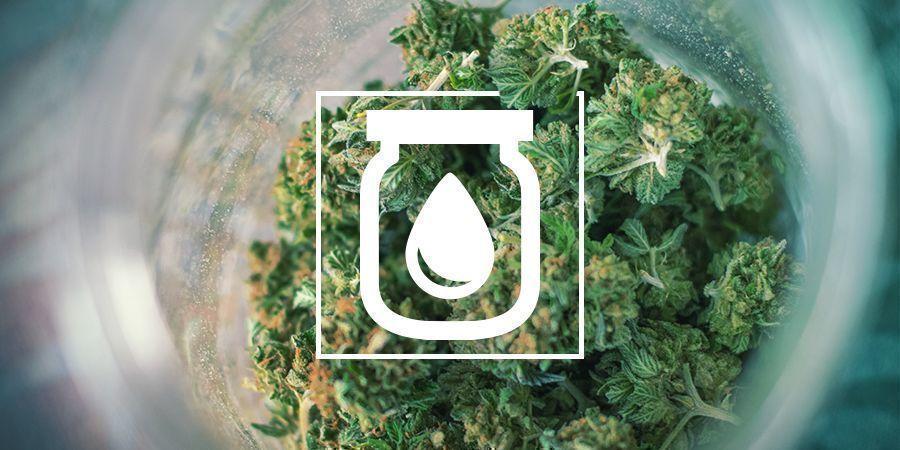 Water Curing Van Cannabis: Wat Is Het En Hoe Het Moet