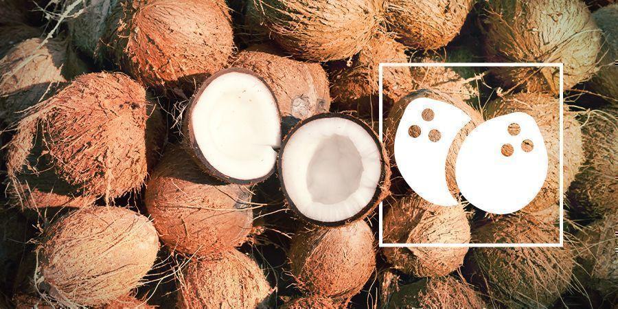 Cannabis In Kokos Kweken