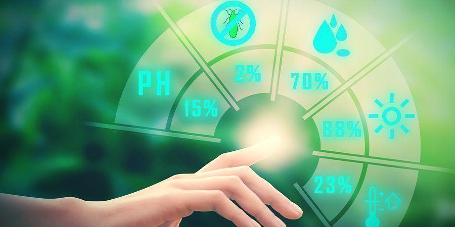 Wietplanten, magnesium en de pH-waarde