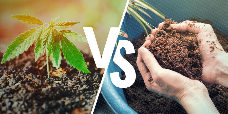 NPK: Aarde versus kokosvezels