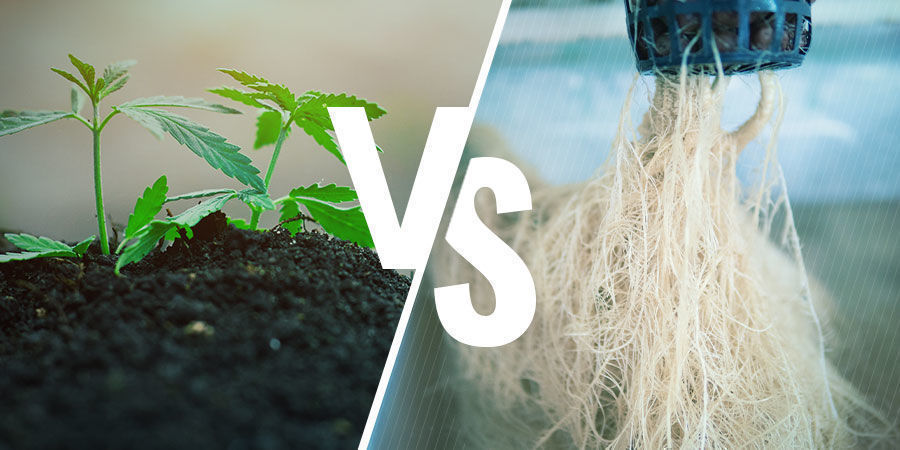 NPK: Aarde versus hydroponics