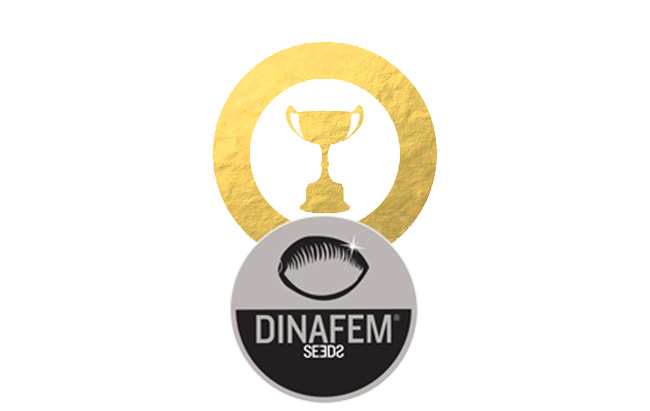 Awards Dinafem