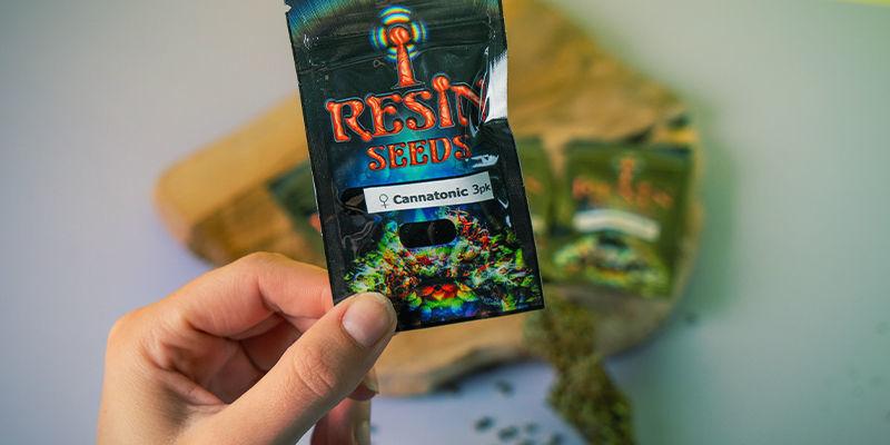 Resin Seeds: grondleggers CBD-beweging