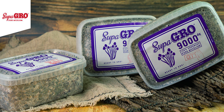 Paddo Grow Kits Supa Gro