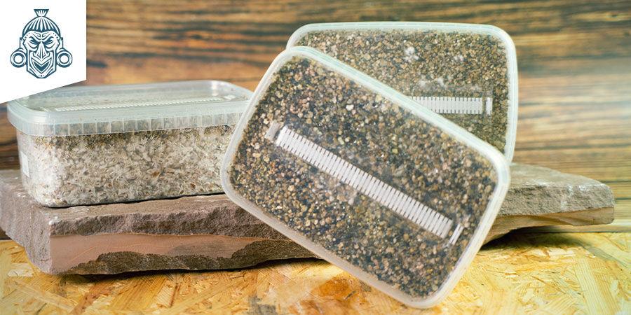 Paddo Grow Kits Zamnesia