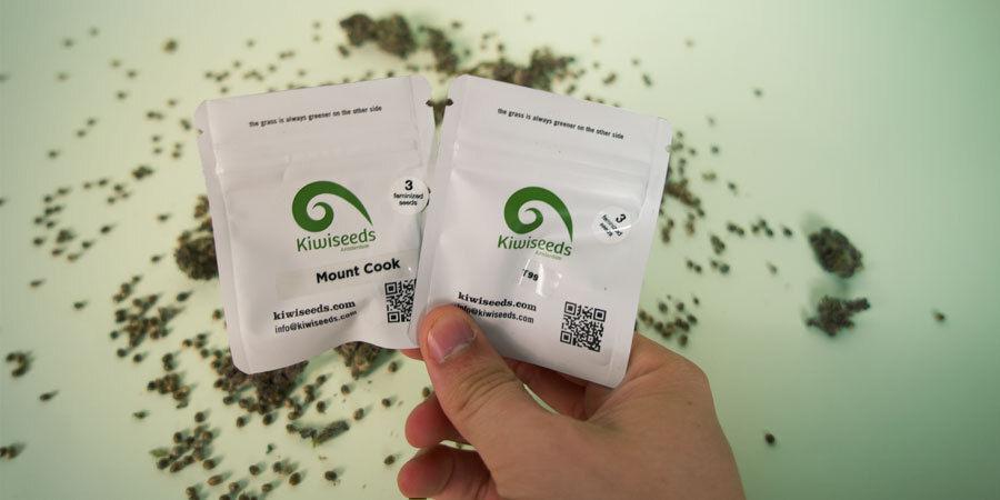 Hoe Worden De Wietzaadjes Van Kiwi Seeds Verpakt?