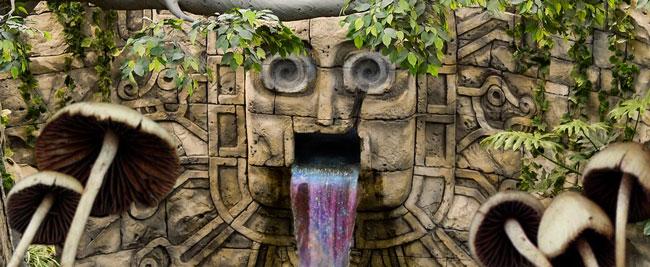 Maya magic mushroom