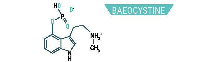 Baeocystine