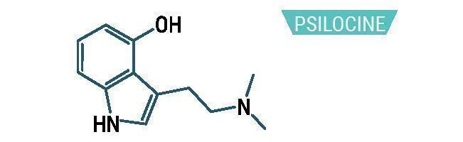 Psilocine