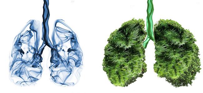 tabak longen vs verdamper longen