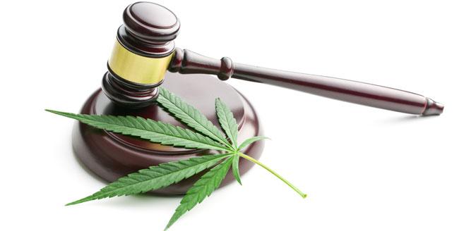Legaliteit cannabis
