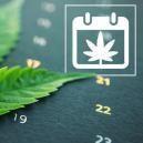 Zamnesia's Cannabis Kweekkalender Voor Een Outdoor Grow