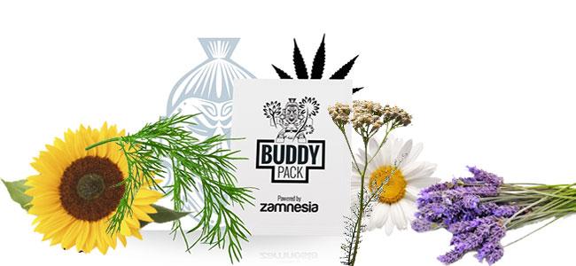 Cannabis metgezel trekken insect
