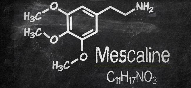 Mescaline molecuul