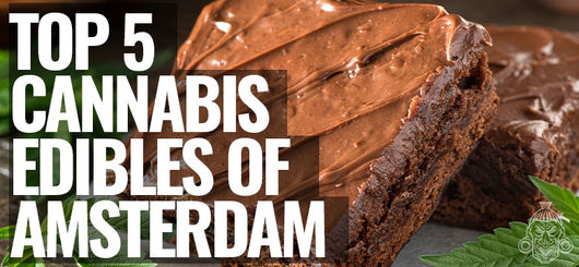 Top 5 Edibles In Amsterdam | Amsterdam Coffeeshop Visits 2020