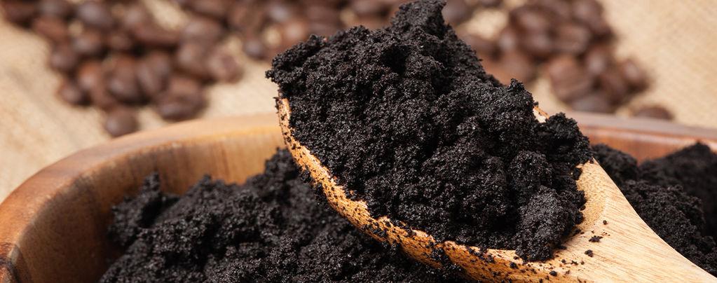 Recycle Koffiedik en Houd Je Planten Tevreden