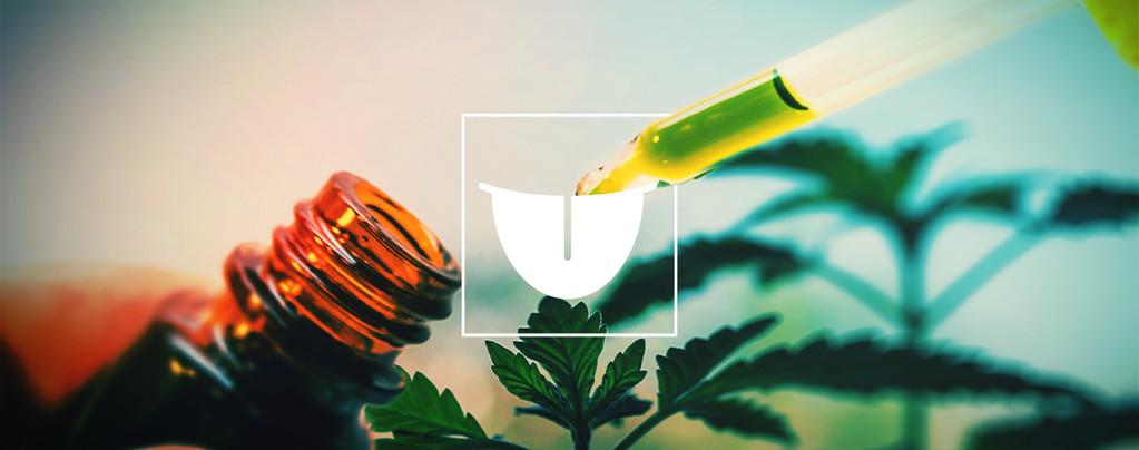 Cannabis-Tincturen
