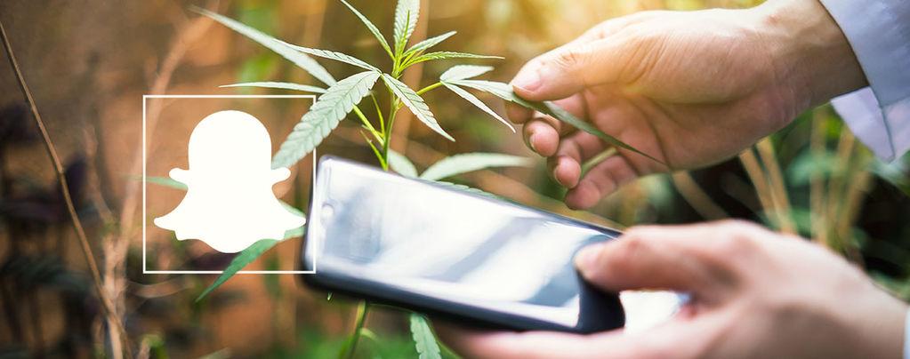 Cannabisaccounts Snapchat