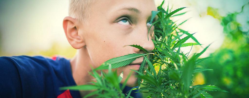 High Zonder Cannabis
