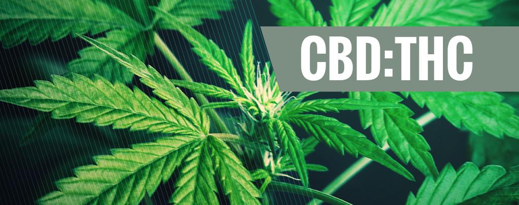 Ratio CBD THC