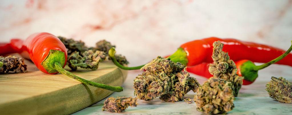 Cannabis En Cayennepeper