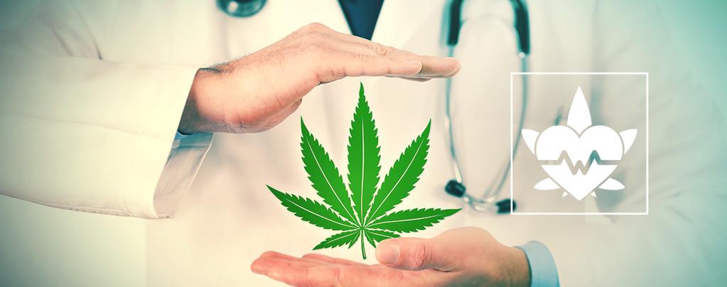 Beste Manier Om Medicinale Cannabis Te Gebruiken