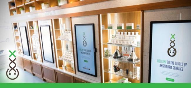 Boerejongens Coffeeshop Info Centre