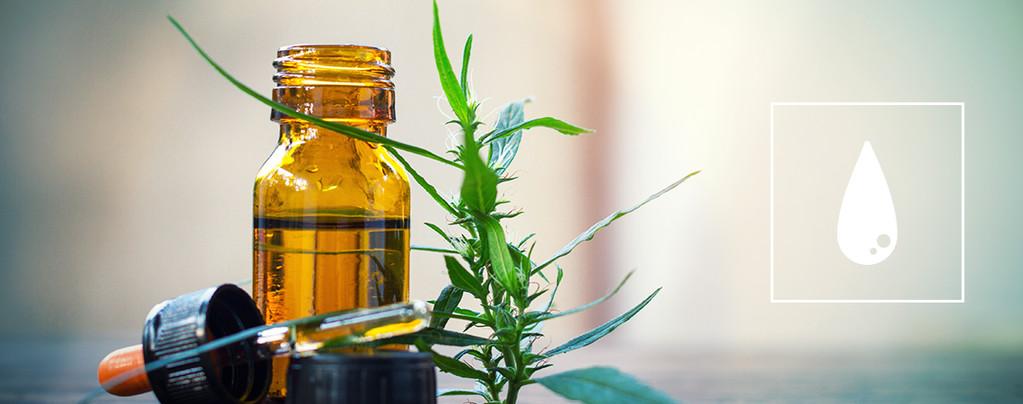 De Beste Methoden Om Cannabis Concentraten Te Gebruiken