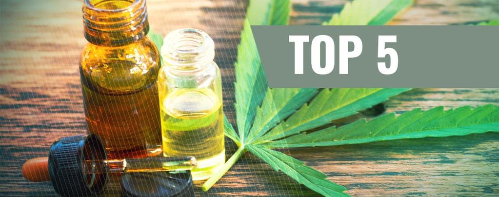 Alles Wat Je Moet Weten Over Cannabisconcentraten
