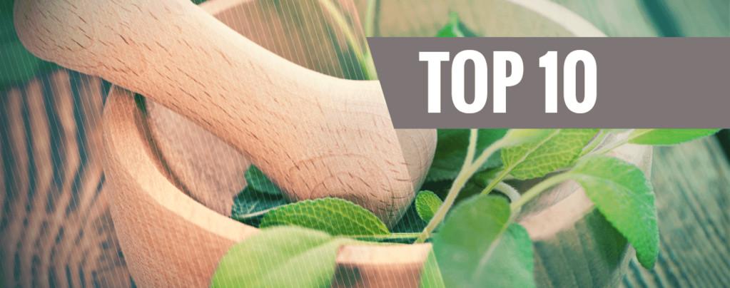 Top 10 Entheogenen