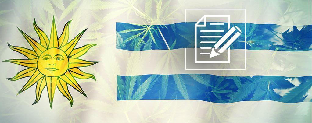 Uruguay: Cannabiswalhalla In Chaos