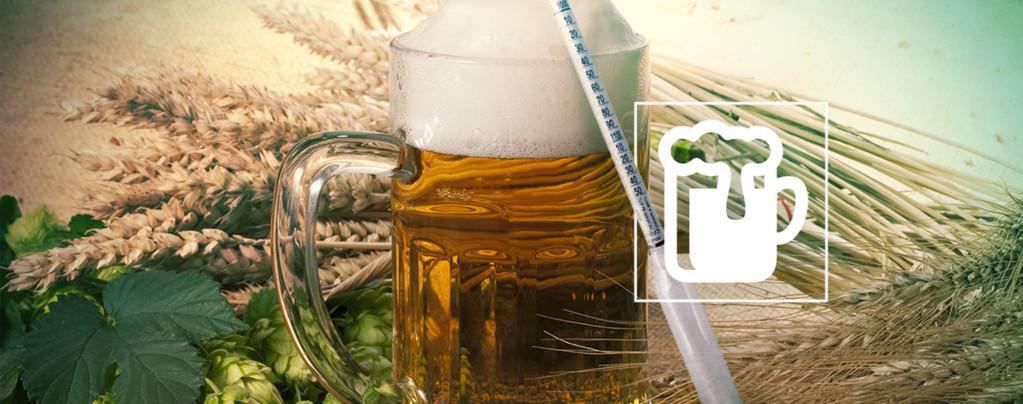 Hydrometer Vinoferm: 3 Schalen (Bier)