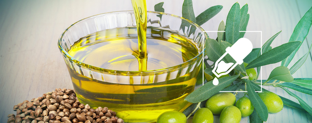 Wat Is De Beste Dragende Olie Voor CBD: Hennepzaad- Of Olijfolie?