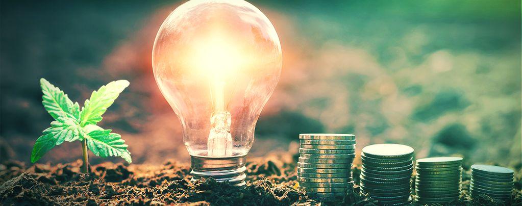 Hoe Bespaar Je Op Energiekosten Bij Het Kweken Van Wiet?
