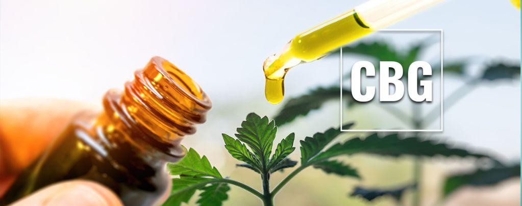 Wat Is CBG Olie?